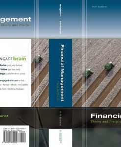 financial management theory and practice 12th edition solutions manual